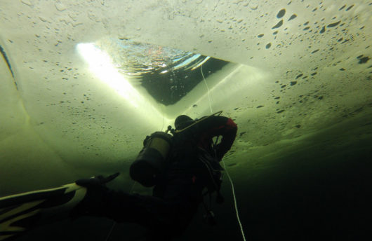 diving under ice in the arctic