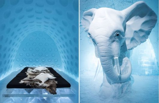 Icehotel elephant in room