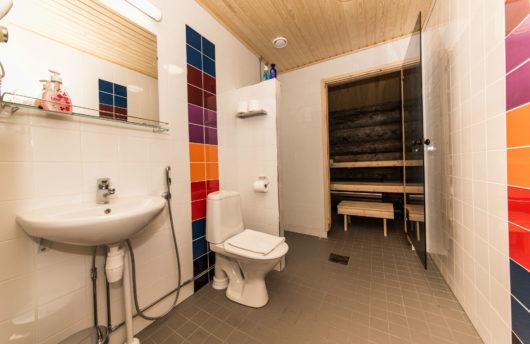 Kakslauttanen Kelo Glass Igloo bathroom and sauna facilities