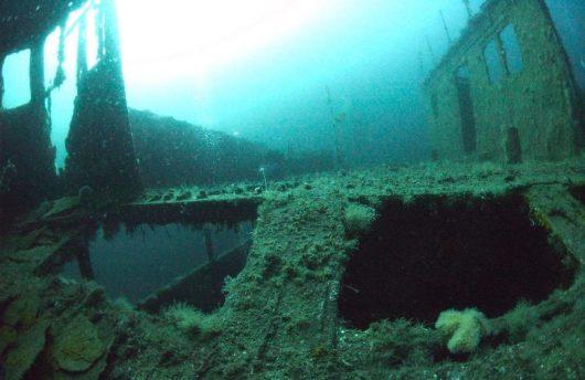 Norway scuba diving adventure