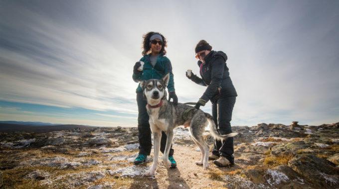summer husky hike at kakslauttanen