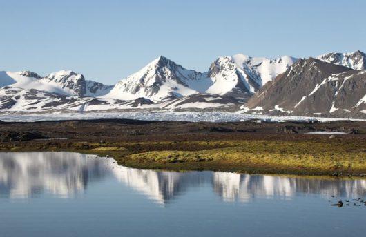 Svalbard Wilderness Experience