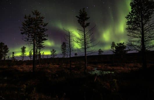 Northern Lights in Autumn