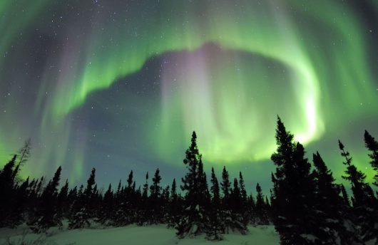See the Northern Lights at Apukka Resort with Arctic Direct