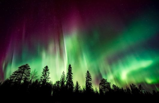Best place to see the Northern Lights at Apukka Resort with Arctic Direct
